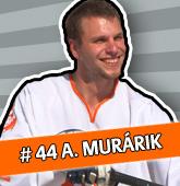 ran_murarik.jpg